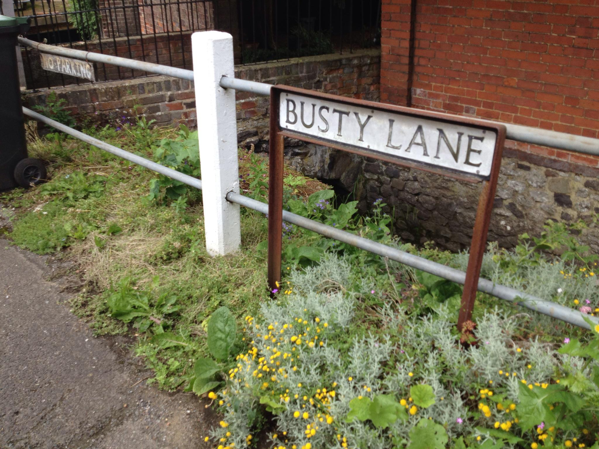 Busty Lane, Ightham street sign