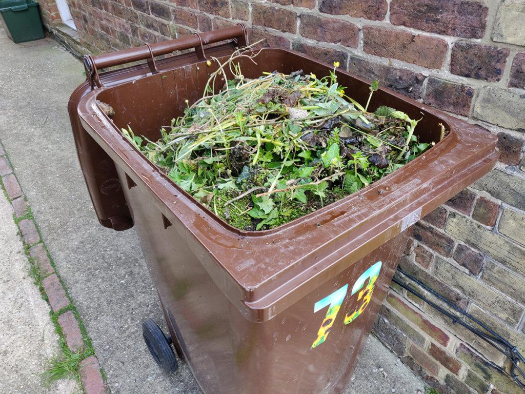 Brown wheelie bin full of garden waste