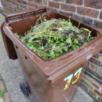 Brown wheelie bin full of garden waste