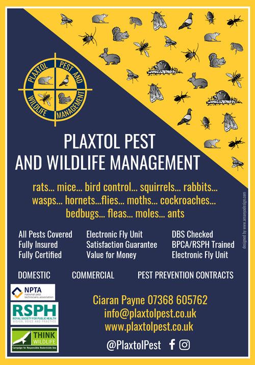 Plaxtol Pest and Wildlife Management - rats, mice, bird control, squirrels, rabbits, wasps, hornets, flies, moths, cockroaches, bedbugs, fleas, moles, ants. All Pests covered, Fully Insured, Fully Certified, Electronic Fly Unit, Satisfaction Guarantee, Value for Money, DBS Checked, BPCA/RSPH Trained, Electronic Fly Unit, Domestic Commercial, Pest Prevention Contracts
